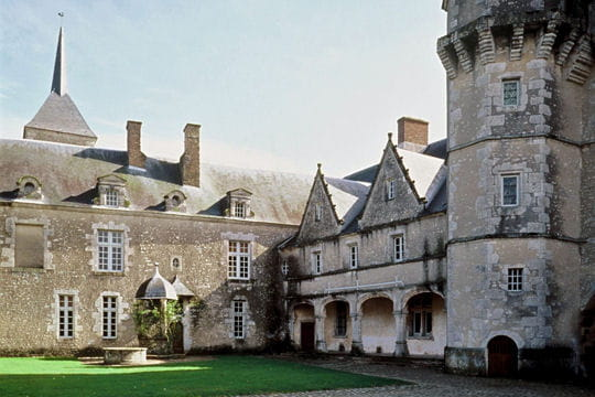 Châteaux .... Chateau-talcy-505010