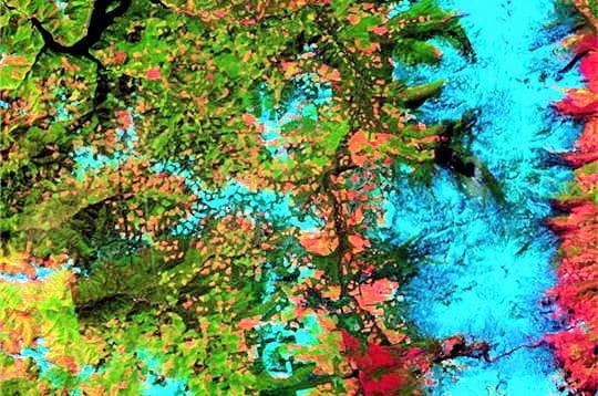 bleu les forts en vert et les zones dboises en orange et - Bleu Attu Salon