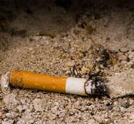 c'est un mégot de cigarette mal éteinte qui aurait déclenché l'incendie.