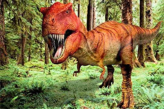 http://www.linternaute.com/science/magazine/images-de-dinosaures/image/images-dinosaures-563357.jpg