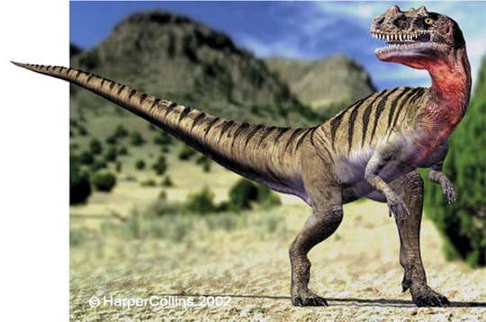 Cératosaure