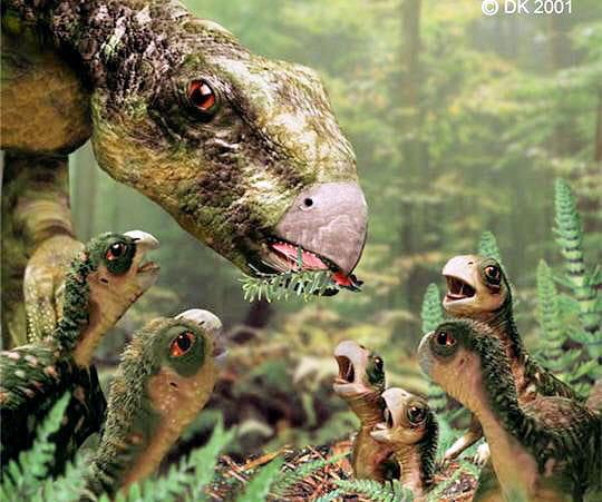 Petits dinosaures