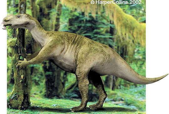 muttaburasaurus
