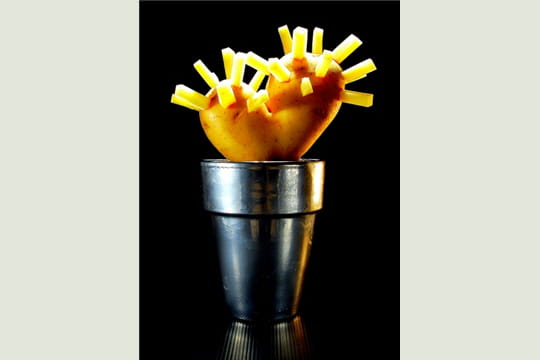 cactea patata frita