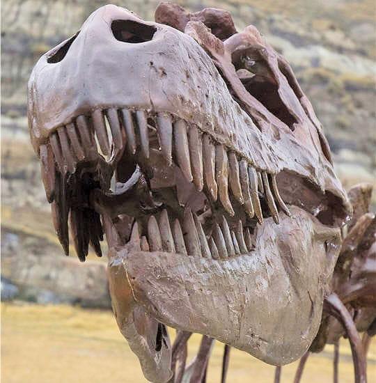 Dents dinosaures