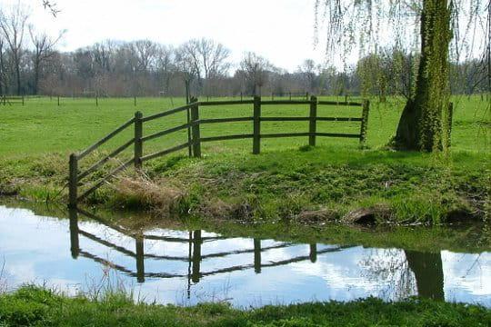 Miroir naturelle nuage ciel d 39 azur for Miroir de l eau