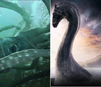 Kraken contre monstre du loch ness le grand match des monstres du cin ma linternaute - La cuisine du monstre tours ...
