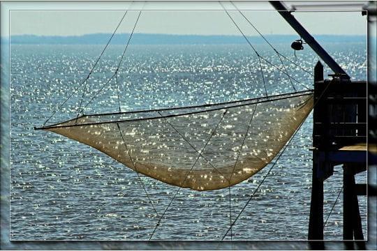 Pêcheur de lumières