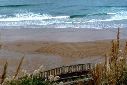 Crop Circle de plage