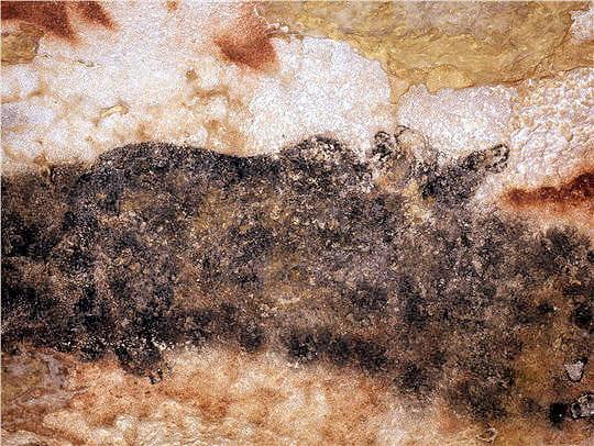 Grotte de Lascaux Ours-lascaux-645053
