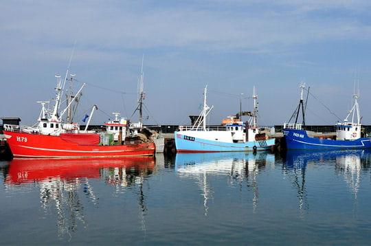 La pêche scandinave