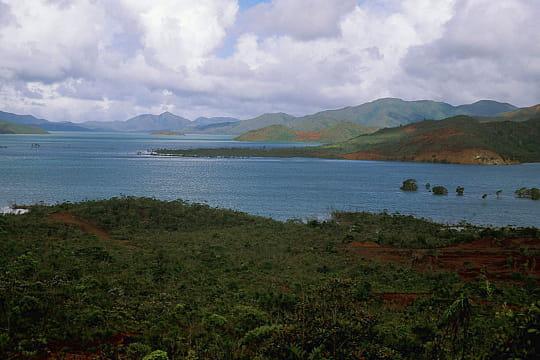 10 forêts en danger (article sous chaque photo) Nouvelle-caledonie-780331