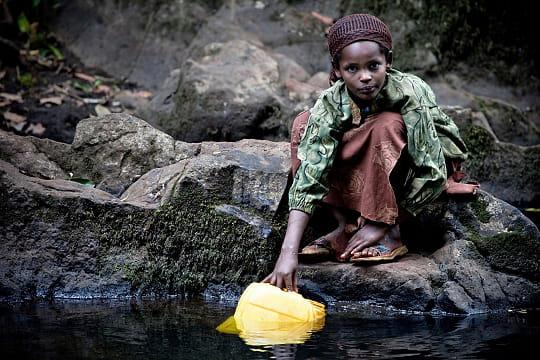 10 forêts en danger (article sous chaque photo) Afromontane-780402