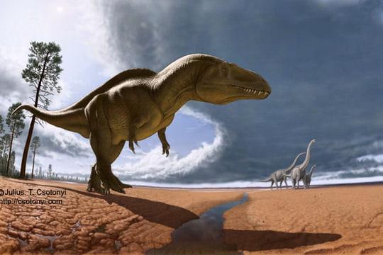 Acrocanthosaure