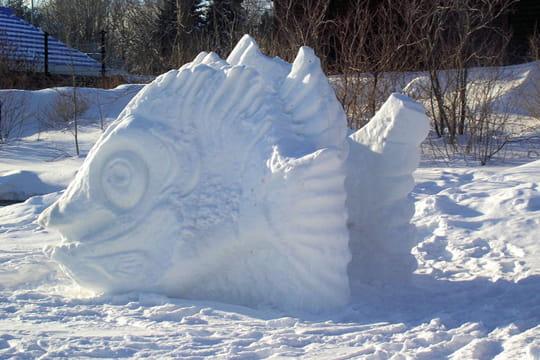 Poisson congel - Cuisiner poisson congele ...