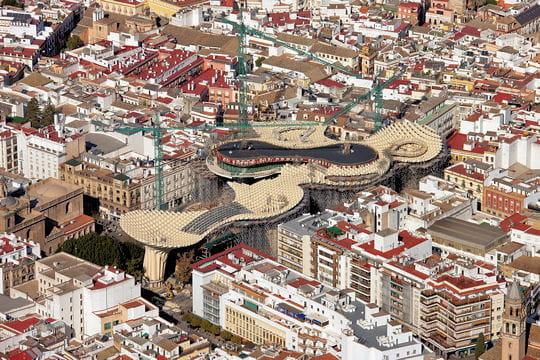 Óriás fa napernyő Sevillából