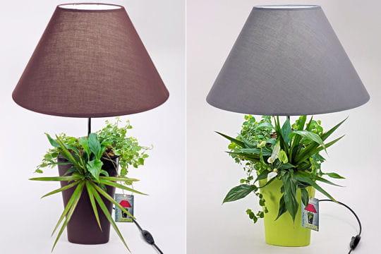 Lampe pour plante for Lampe pour plante d interieur