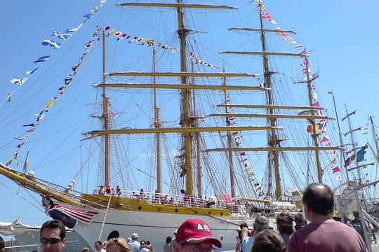 صفقة السفينة الشراعية  di Amerigo Vespucci للبحرية الجزائرية - صفحة 3 Mircea-884797
