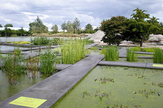 Un jardin dans la ville promenade en france for Jardin bordeaux