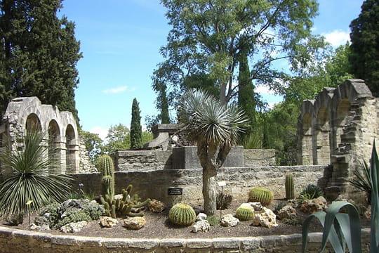 Un jardin dans la ville promenade en france - Sortir montpellier aujourd hui ...