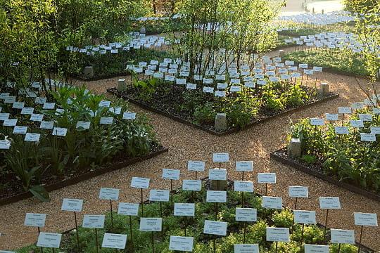 Le jardin des plantes disparues 15 cr ations du festival des jardins de chaumont linternaute for Jardins de plantes