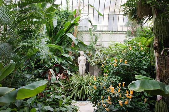 Photos de jardin d 39 hiver paris 75018 for Jardin en hiver